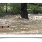 Boulder Creek Flooding