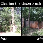 Clearing the Underbrush