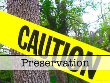 Tree Protection Zones