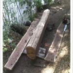 chainsaw milling freehand