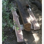 freehand chainsaw milling