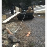 loading milled timber into truck using a winch